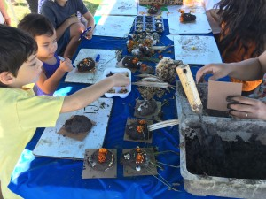 Kids Making All-Natural Seed Skulls